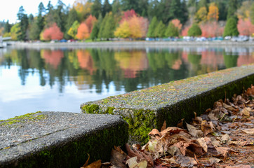Stanley Park fall