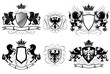 Heraldry coat of arms - 72996677