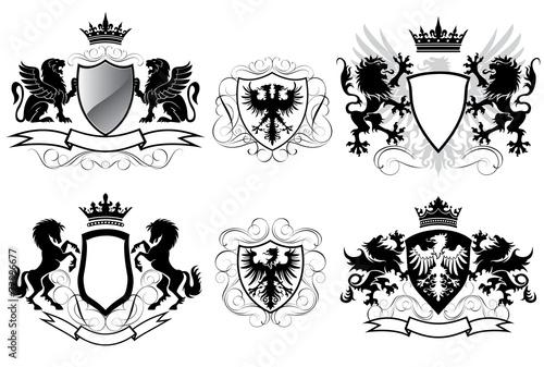 Heraldry coat of arms - 72996677