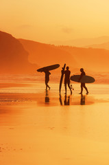 surfers on the shore at sunset