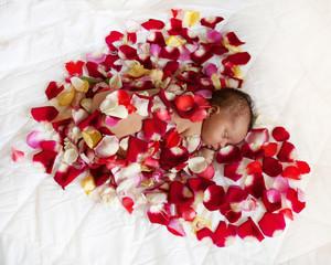 Black newborn baby in red heart.
