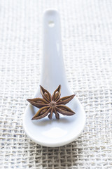 Star anise on a white spoon