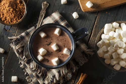 Tuinposter Chocolade Homemade Dark Hot Chocolate