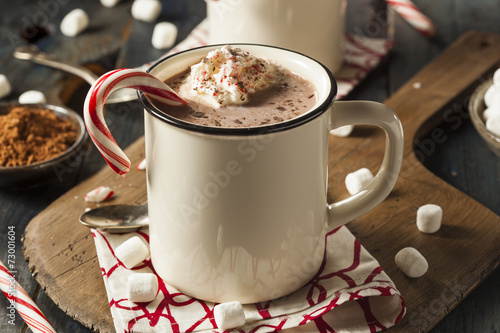 Fotobehang Chocolade Homemade Peppermint Hot Chocolate