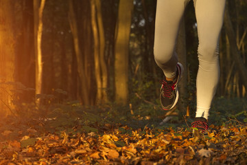Fitness Girl running at sunset in forest