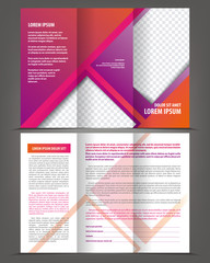 Vector empty trifold brochure design print template