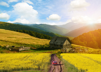 Beautiful landscape in mountains with yellow fields and blue sky