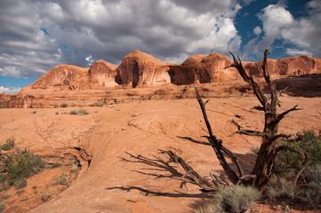 Utah Wilderness