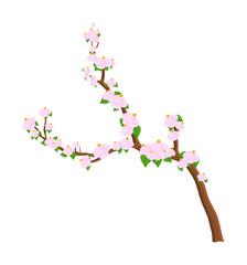 Flowers Branch Vector