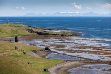 Atlantic ocean coast in Iceland