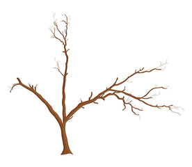 Dead Tree Design Element