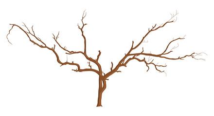 Dead Tree Branches Designs