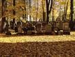 canvas print picture - Alter Jüdischer Friedhof in Dresden
