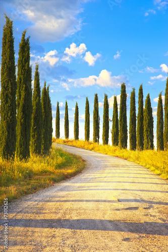 tuscany-cyprysow-drzewa-bialy-drogowy-wiejski-krajobraz-wlochy-europa