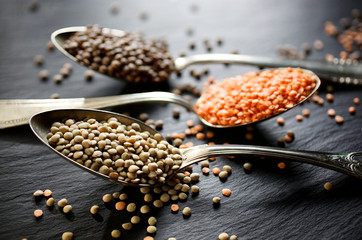 Various kinds of lentils