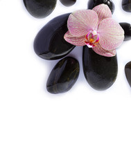 Spa stones on white background with orchid
