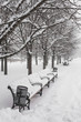 canvas print picture - Benches in the winter city park