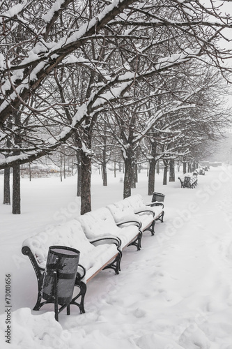 canvas print picture Benches in the winter city park
