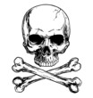 Black and white skull and crossbones isolated