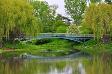 Bridge at Chicago Botanic Garden