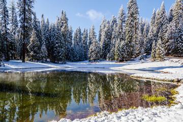 Winter Paradise IV