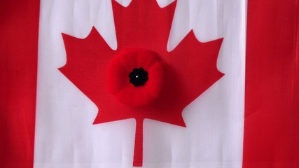 Canadian Poppy and Canadian Flag in Remembrance Day