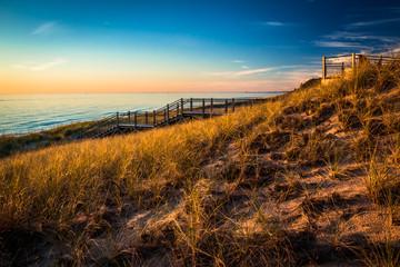 Grassy Dunes Lakeshore