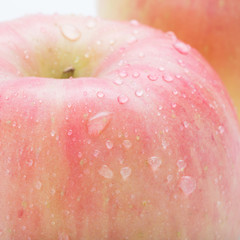 apple fuji fruit with water drops