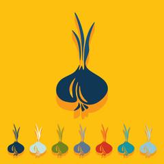Flat design: onion