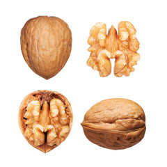Walnuts set isolated on white