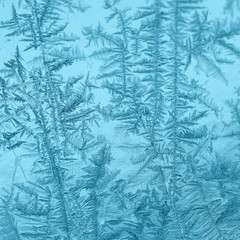 Winter patterns on glass