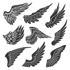 Wings Silhouette