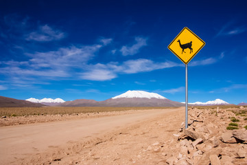 Llama road sign in Bolivia, South America