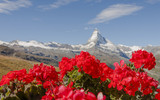 Zermatt, Dorf, Walliser Alpen, Schweizer Berge, Bergidylle