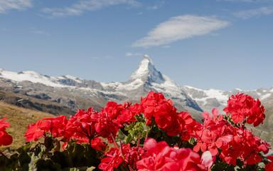 Zermatt, Bergdorf, Blumendekoration, Wallis, Alpen, Schweiz