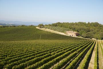 Tusca hills