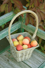 Ripe apple in braided basket