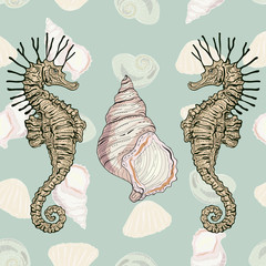 seahorses and shells