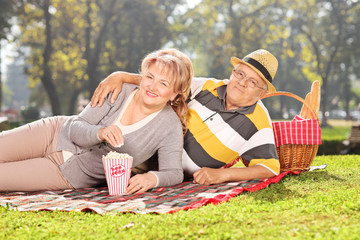 Mature couple enjoying a picnic in the park