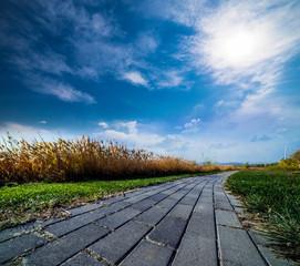 reed path sky clound