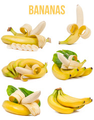 set of six compositions bananas isolated