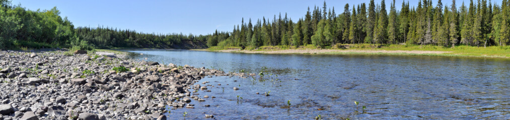 Panorama of the wild river.
