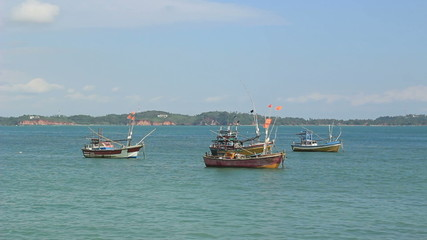 several fishing boats in the bay