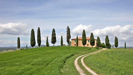 Rural house and cypress avenue, typical landscape of Tuscany, It