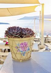 Santorini panorama from a restaurant terrace
