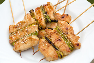 barbecue with delicious grilled meat and leek