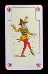 Spielkarten der Ladys - Hofnarr und JOKER