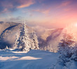 Colorful winter morning in the foggy mountains