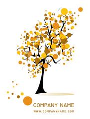 albero giallo e arancione