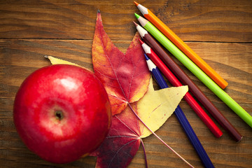 school colored pencils and autumn leaves